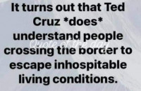 idiot_ted