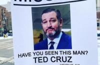 idiot_ted9